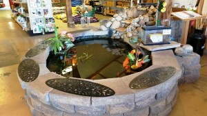 Redbird brings the outdoors in with their in-store fish pond.